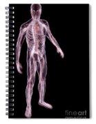 Male Anatomy Spiral Notebook