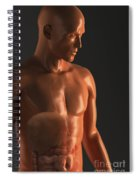 Male Figure With Digestive System Spiral Notebook