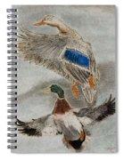 Mallard Pair Spiral Notebook