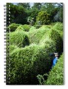 Man Lost Inside A Maze Or Labyrinth Spiral Notebook