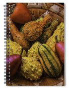 Many Colorful Gourds Spiral Notebook