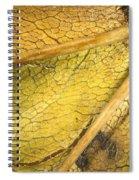 Maple Leaf Detail Spiral Notebook