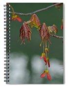 Maple Red Samaras Spiral Notebook