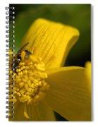 Marsh Marigold Spiral Notebook