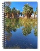 Mccallum Pond - Coachella Valley  Spiral Notebook