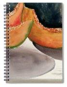 Melons Spiral Notebook