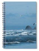 Misty Copalis Rock And Gulls Spiral Notebook