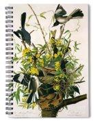 Mocking Birds And Rattlesnake Spiral Notebook