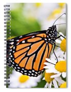 Monarch Butterfly Spiral Notebook