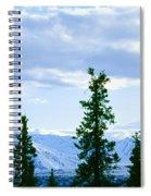 Mount Mckinley, Alaska Spiral Notebook