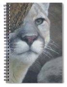 Mountain Lion Painterly Spiral Notebook