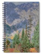 Mountains And Trees Spiral Notebook