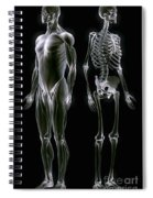 Muscles And Bones Spiral Notebook