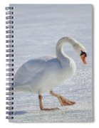 Mute Swan On St Clair River Spiral Notebook