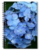 My Blue Heaven Spiral Notebook