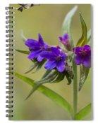 Purple Gromwell Spiral Notebook