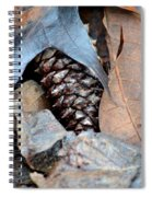 Natural Abstract 47 Spiral Notebook