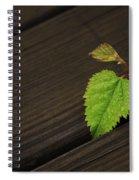 Nature Finds A Way Spiral Notebook