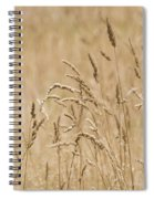 Nature Landscape Spiral Notebook