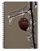 Nature's Candy Apple Spiral Notebook