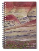 John Day Fossil Beds Painted Hills Spiral Notebook