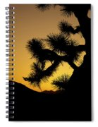 New Photographic Art Print For Sale Joshua Tree At Sunset Spiral Notebook