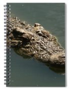 Nile Crocodile - Africa Spiral Notebook