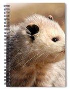 North American Opossum In Winter Spiral Notebook