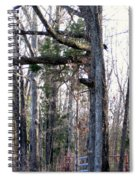 North Texas Trees Spiral Notebook