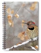 Northern Flicker Woodpecker Spiral Notebook