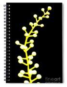Not Yet Spiral Notebook