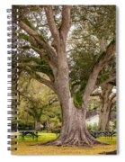 Oak Alley Backyard Spiral Notebook