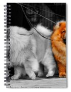 One Of A Kind Spiral Notebook