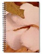 Open Cotton Boll Spiral Notebook