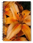 Orange Lilies Spiral Notebook