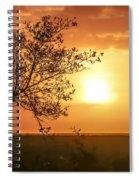 Orange Morning Spiral Notebook