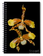 Orchid Series 104 Spiral Notebook