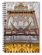 Organ In Cordoba Cathedral Spiral Notebook