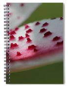 Oriental Lily Named Tiger Edition Spiral Notebook