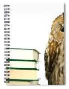 Owl At A Book Pile Spiral Notebook
