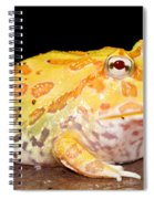 Pac Man Frog Ceratophrys Spiral Notebook