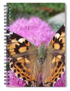 Painted Lady Butterfly Up Close Spiral Notebook