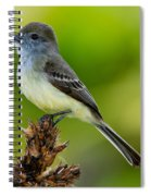Pale-edged Flycatcher Spiral Notebook