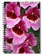 Pansy Orchid 1 Spiral Notebook