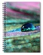 Peacock Gem Spiral Notebook