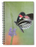 Piano Key Butterfly1 Spiral Notebook