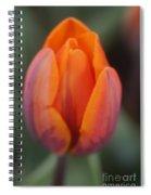 Pillow Soft Spiral Notebook