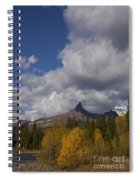 Pilot And Index Peaks   #9246 Spiral Notebook