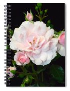 Pretty In Pink Spiral Notebook