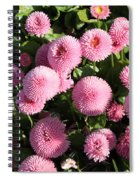 Pink Button Pom Flowers Spiral Notebook